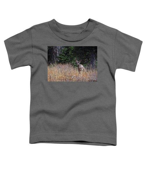 Mule Deer In Utah Toddler T-Shirt