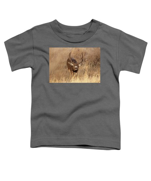 Muledeerbuck1 Toddler T-Shirt