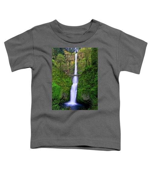 Multnomah Dream Toddler T-Shirt