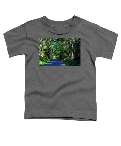 Murphy Mill Road - 2 Toddler T-Shirt