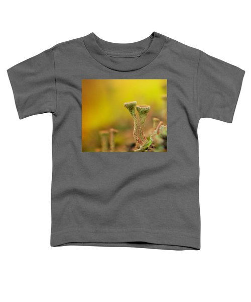 Mushroom World Toddler T-Shirt