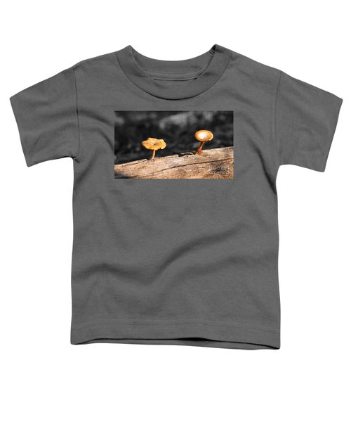 Mushrooms On A Branch Toddler T-Shirt