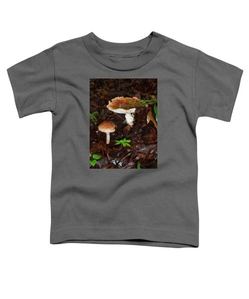 Mushrooms Rising Toddler T-Shirt