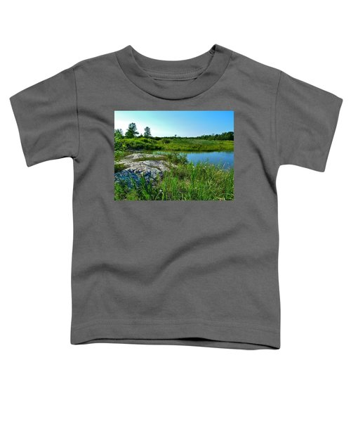 Muskoka Ontario 4 Toddler T-Shirt