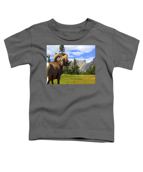 My Kingdom Toddler T-Shirt