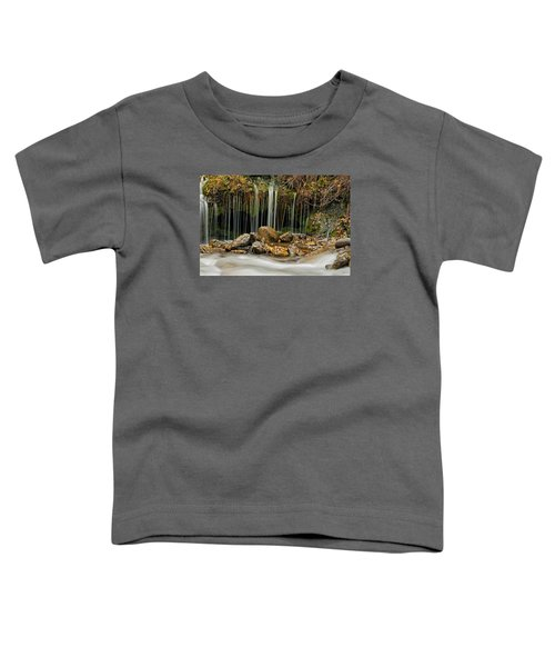 Mystery Stream Toddler T-Shirt