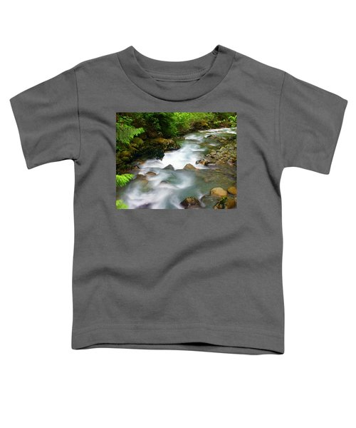 Mystic Creek Toddler T-Shirt