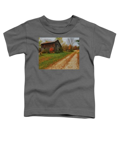 Mystical Country Lane  Toddler T-Shirt