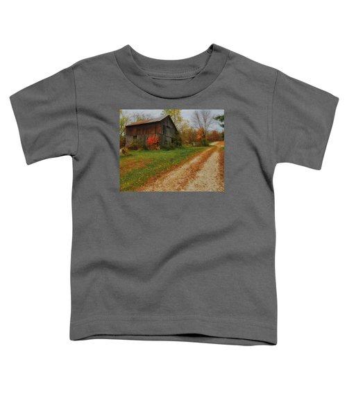 Mystical Country Lane  Toddler T-Shirt