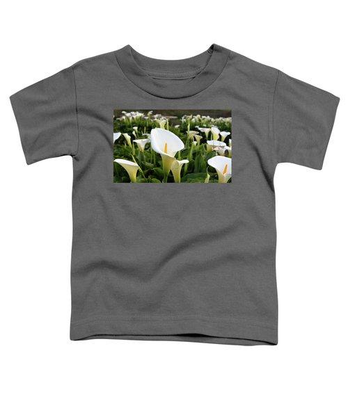 Natures Perfection Toddler T-Shirt