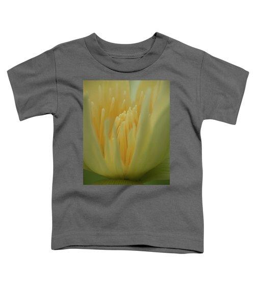 Natures Reflection Toddler T-Shirt