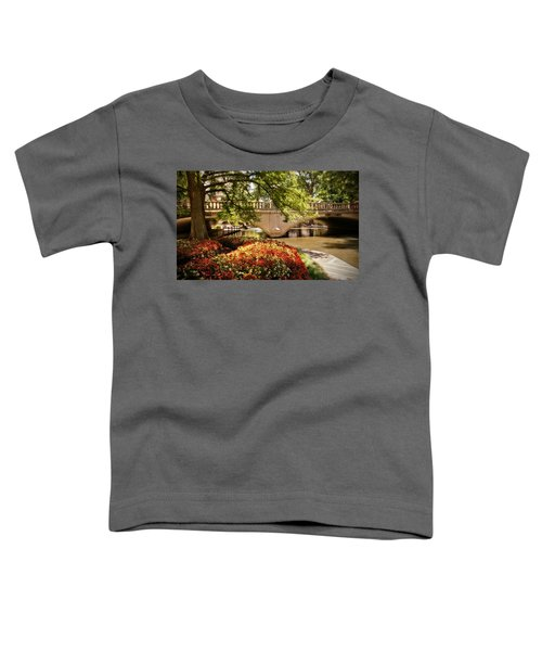 Navarro Street Bridge Toddler T-Shirt