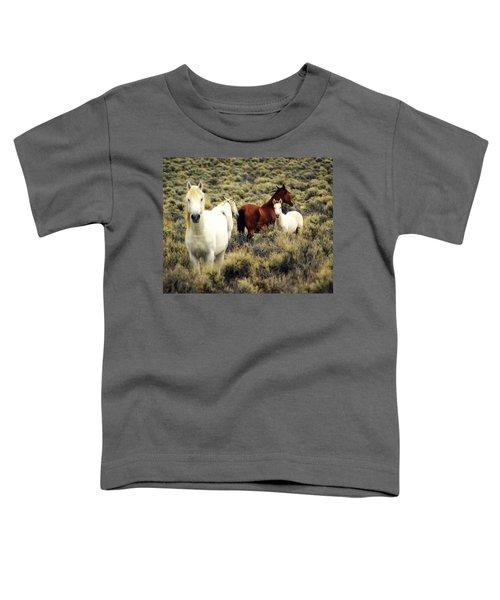 Nevada Wild Horses Toddler T-Shirt