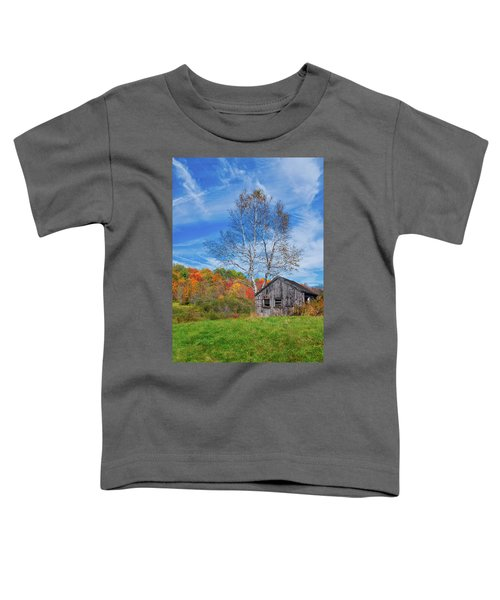 New England Fall Foliage Toddler T-Shirt