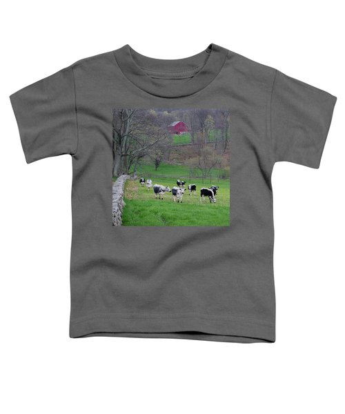 Toddler T-Shirt featuring the photograph New England Spring Pasture Square by Bill Wakeley
