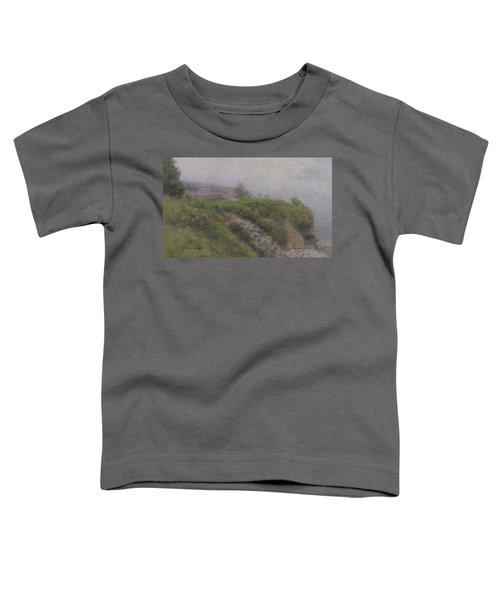 Newport Cliff Walk In The Fog Toddler T-Shirt