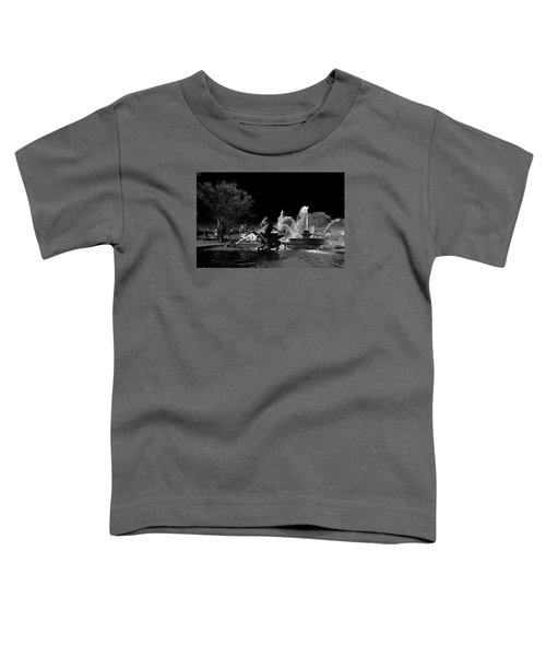 Nichols Fountain Toddler T-Shirt
