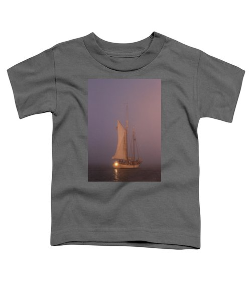 Night Passage Toddler T-Shirt