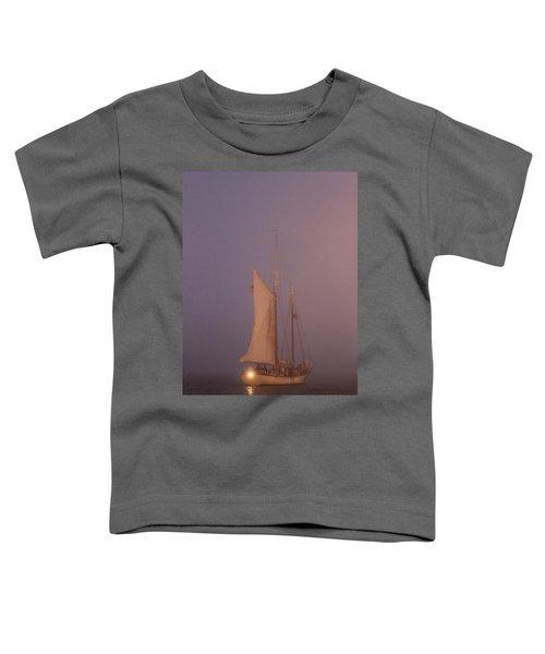 Night Passage Toddler T-Shirt