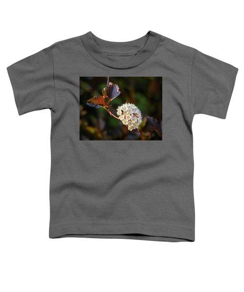 Ninebark Summer Wine Toddler T-Shirt