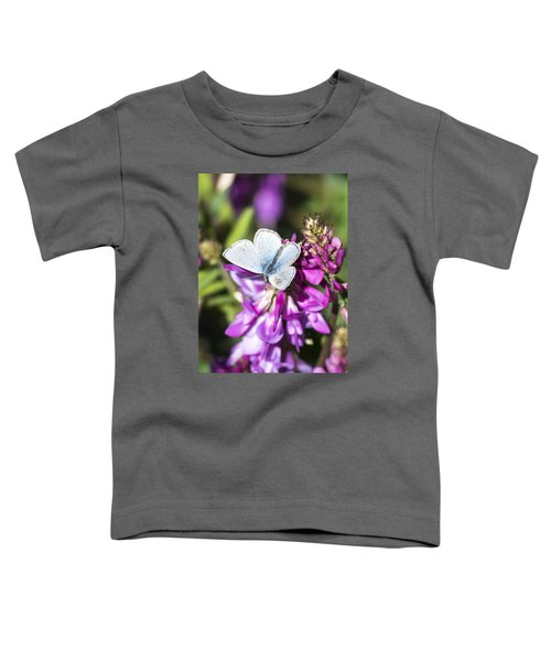 Northern Blue Butterfly Toddler T-Shirt