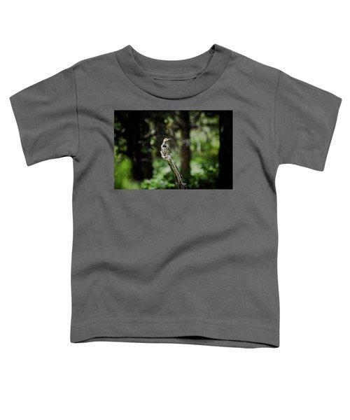 Northern Flicker Toddler T-Shirt