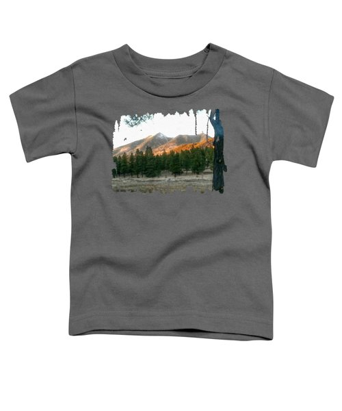 November Sunset On Sf Peaks Toddler T-Shirt