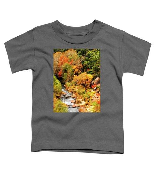 Oak Creek Canyon Toddler T-Shirt