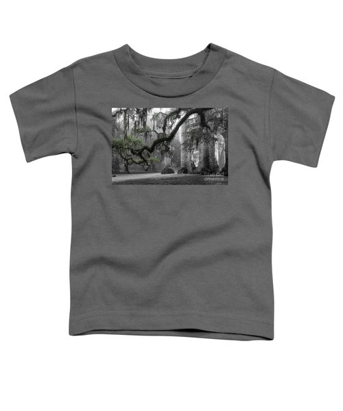 Oak Limb At Old Sheldon Church Toddler T-Shirt
