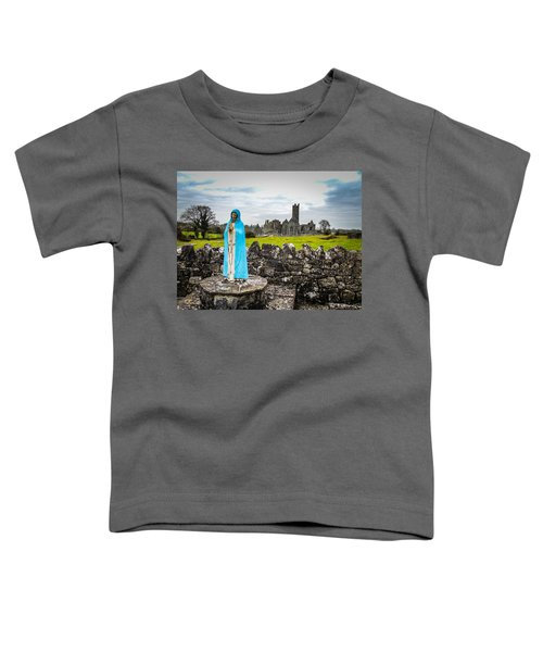 Toddler T-Shirt featuring the photograph Official Greeter At Ireland's Quin Abbey National Monument by James Truett