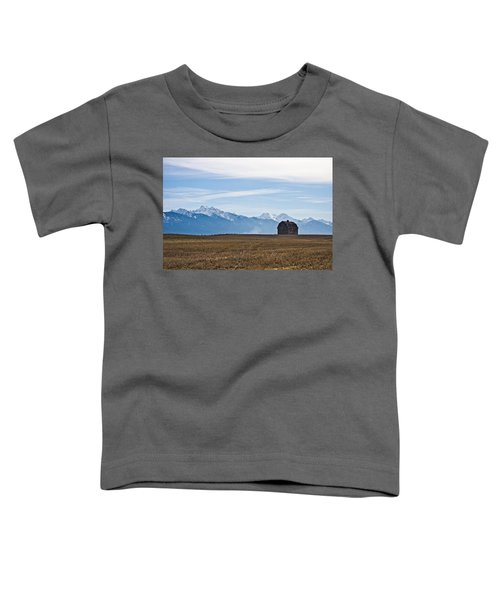 Old Barn, Mission Mountains Toddler T-Shirt