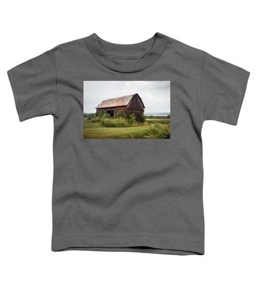 Old Barn On Seneca Lake - Finger Lakes - New York State Toddler T-Shirt