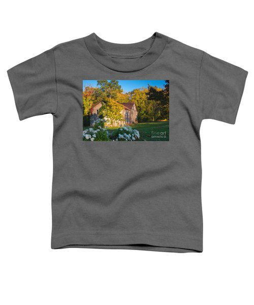 Old Beauty Toddler T-Shirt