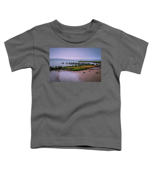Old Columbia River Docks Toddler T-Shirt