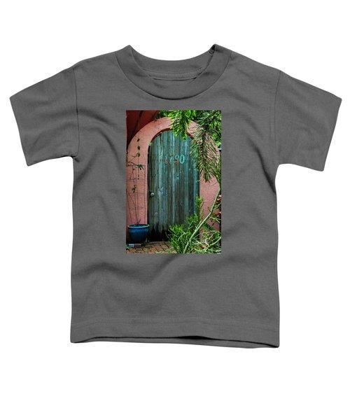 Old Florida 7 Toddler T-Shirt
