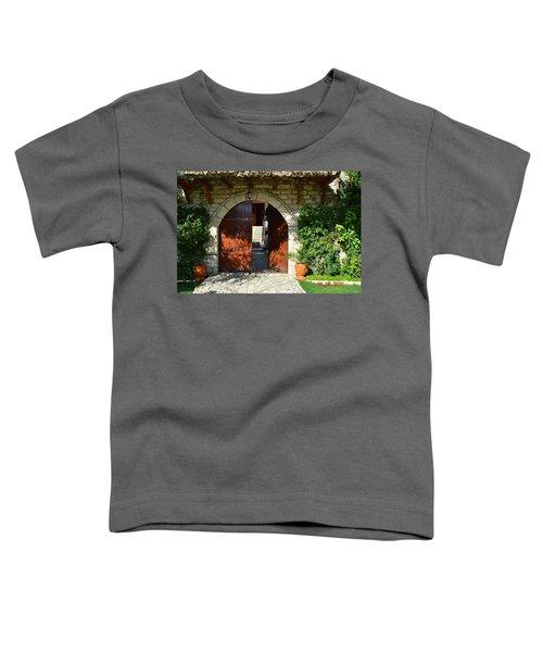 Old House Door Toddler T-Shirt