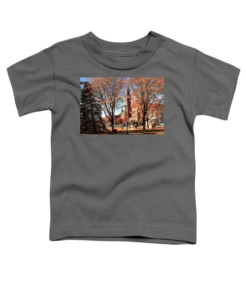 Old Town Hall In The Fall Toddler T-Shirt