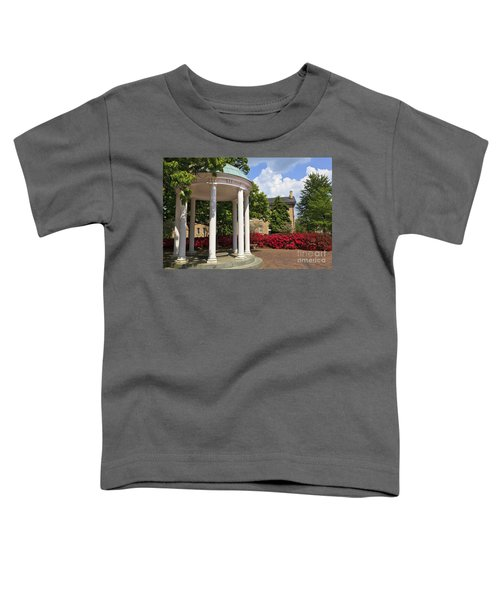 Old Well At Chapel Hill In Spring Toddler T-Shirt