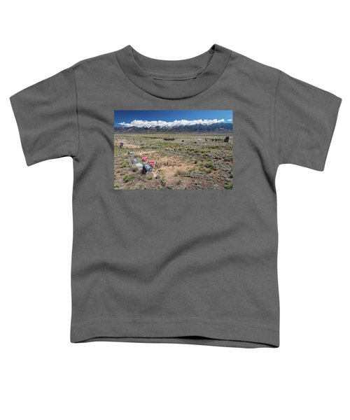 Old West Rocky Mountain Cemetery View Toddler T-Shirt by James BO Insogna