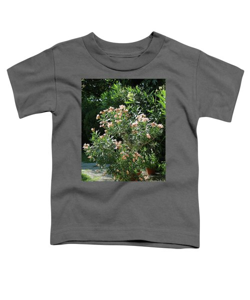 Oleander Petite Salmon 4 Toddler T-Shirt