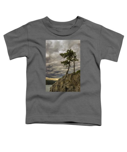 Ominous Weather Toddler T-Shirt