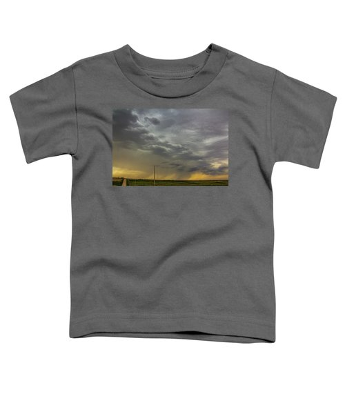 On My Way To Wray Colorado 011 Toddler T-Shirt
