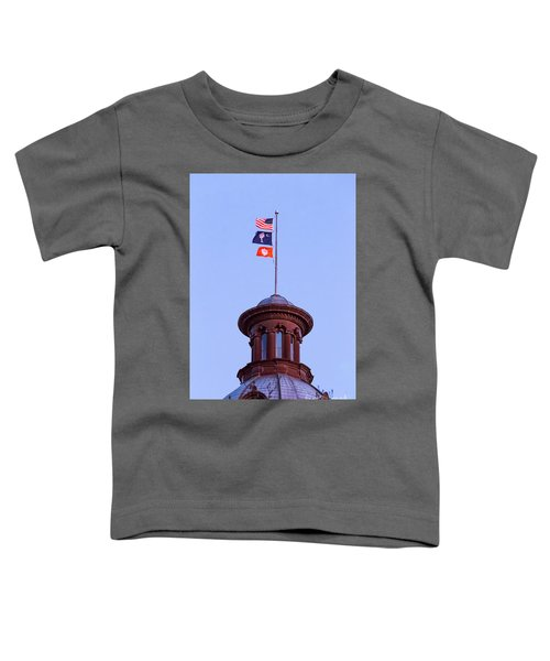 On The Dome-5 Toddler T-Shirt