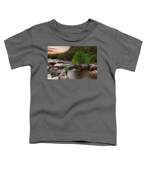 On The Edge Of Time Toddler T-Shirt