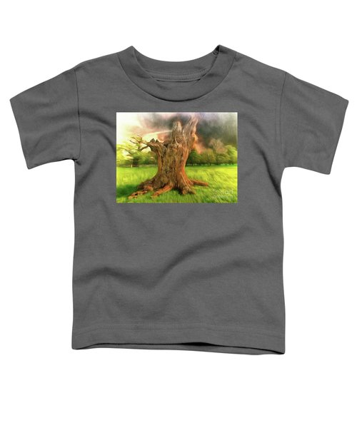 Once I Touched The Stars Toddler T-Shirt
