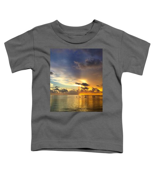 One Summer Night... Toddler T-Shirt