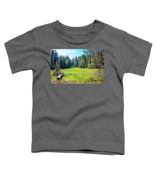 Open Meadow- Toddler T-Shirt