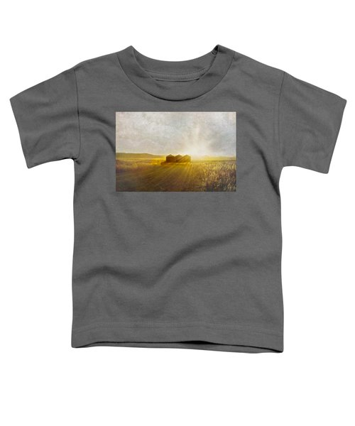 Open Spaces Toddler T-Shirt
