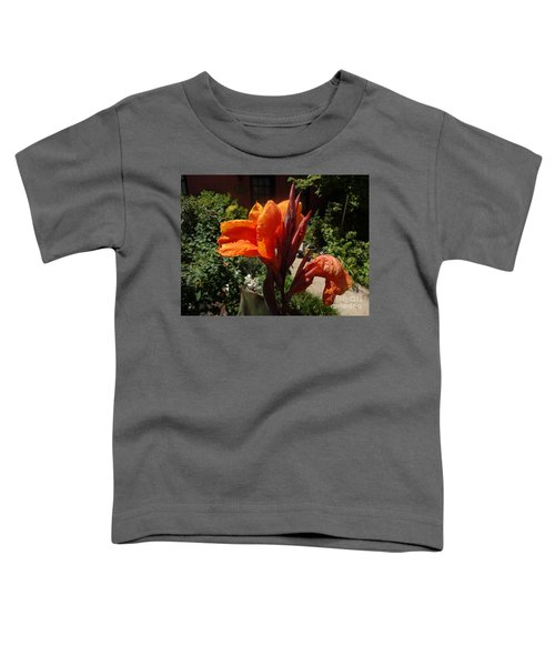 Orange Canna Lily Toddler T-Shirt by Rod Ismay