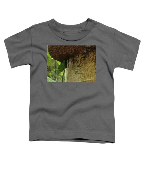Orange -chinned Parakeet  On A Termite Mound Toddler T-Shirt